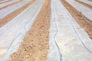 Solar-Esterilization-MedQual-180x120
